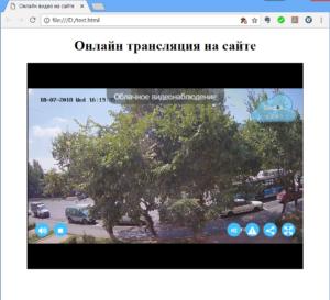 онлайн видео с камеры на сайте